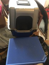Cat litter box with dome in Houston, Texas