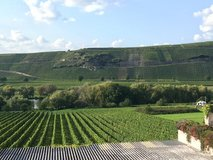 Large Townhome w/ stunning Mosel & Vineyard Views! in Spangdahlem, Germany