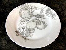 "CORELLE ""ANTIQUE LINEN"" PATTERN DISHES, CUPS, ETC. WANTED in Perry, Georgia"