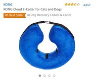"""Inflatable Dog """"Cone"""" in Okinawa, Japan"""