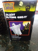 Halloween decoration flying ghost in Algonquin, Illinois