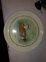 Hanging Duck plate in Clarksville, Tennessee