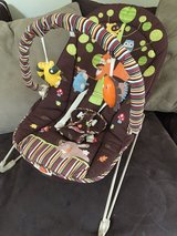 BABy bouncer in St. Charles, Illinois