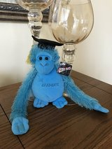 Graduation Monkey in Plainfield, Illinois