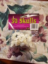 PACKAGE OF 30 SKULL RINGS in Clarksville, Tennessee