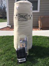 Everlast Heavy Canvas Punching Bag & Gloves in Lockport, Illinois