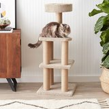 AmazonBasics Cat Activity Tree with Scratching Posts in Naperville, Illinois