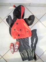 lady bug costume 24 months in Stuttgart, GE