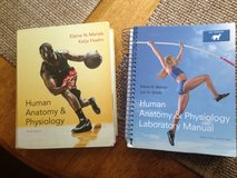 (Bio 168/169) Human Anatomy & Physiology HC Text and Lab Manual (CCCC) in Camp Lejeune, North Carolina