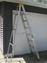 8-ft Step Ladder in Chicago, Illinois