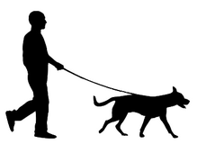 Dog Walker in Lakenheath, UK