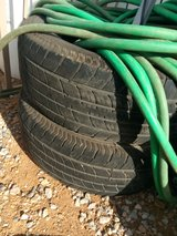 100' water hose in Yucca Valley, California