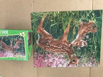 Deer puzzle in Camp Pendleton, California