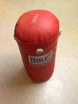 Everlast  Youth Punching Bag. in Tinley Park, Illinois