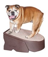 Pet Gear Stramp Stair and Ramp Combination, Dog/Cat Easy Step, Lightweight/Portable, Sturdy in Aurora, Illinois