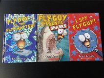 Lot of Fly Guy Books in Joliet, Illinois