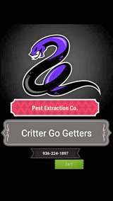 pest extraction expert 9362241897 in Conroe, Texas