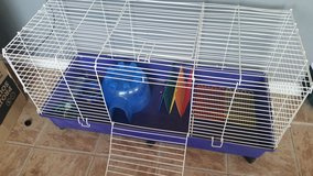 Guinea Pig or Rabbit Cage in 29 Palms, California