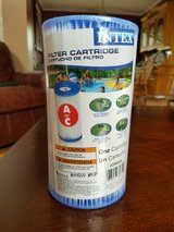 Intex Easy Set Pool Replacement Type A or C Filter Cartridge in Naperville, Illinois