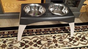 Raised High Endurance Plastic Dog Dish Set in Beaufort, South Carolina