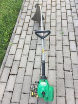 Weed Eater in Ramstein, Germany