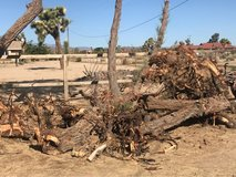 Fire Wood in Yucca Valley, California