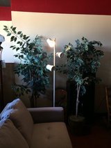 $5-$10 Fake Trees - Side Tables - Shoe Racks + More in Leesville, Louisiana