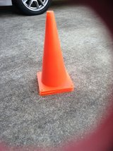 Cones in Fort Benning, Georgia