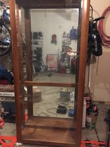 Free! Curio/Display cabinet in Chicago, Illinois