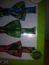 Ninja Turtle bow ties in The Woodlands, Texas