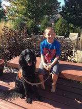 Donations for service dog in Naperville, Illinois