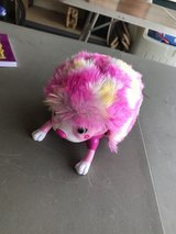 Hedgehog Toy in Bolingbrook, Illinois