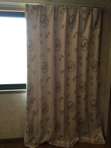 Japanese Curtain in Okinawa, Japan