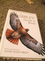 sibley guide to birds in Alamogordo, New Mexico