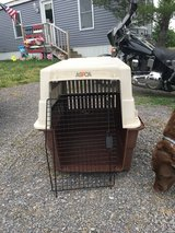 Large  Pet. Rate in Fort Drum, New York