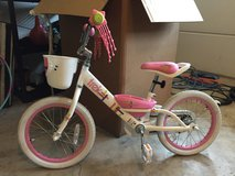 Small Girls TREK Bicycle in Aurora, Illinois