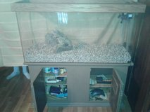 75 gallon aquarium with stand and all needed to start. in Las Vegas, Nevada