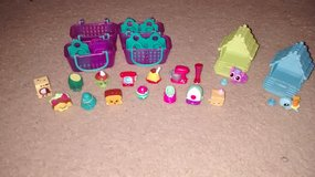 Shopkins and Animal Jam figures in Oswego, Illinois