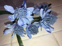 Wanted - Blue Cone Flowers - Dollar Tree in 29 Palms, California