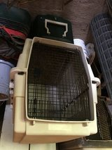 Large dog carriers in Byron, Georgia