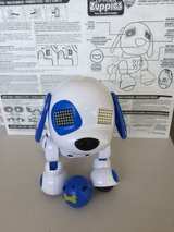zoomer Zuppies, Interactive Puppy, Zuppy Love - Sport in Tinley Park, Illinois