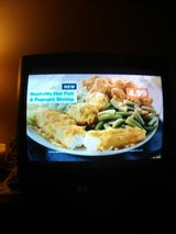 20 inch + 13 inch Television in Fort Campbell, Kentucky