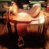 Beautiful Saddle in Fort Knox, Kentucky