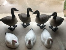 Full Bodies Goose Decoys TF, BF in Orland Park, Illinois