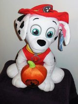 Marshall from paw patrol in Fort Belvoir, Virginia