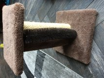 Used scratching post in Oswego, Illinois