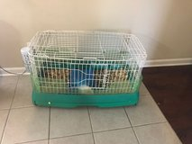 Free Guinea Pig and cage in Fort Campbell, Kentucky
