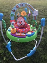 Puppy Jumperoo in Fort Campbell, Kentucky