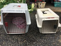 Pet carriers in Lockport, Illinois