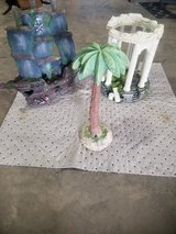 Fish tank palm tree in Clarksville, Tennessee